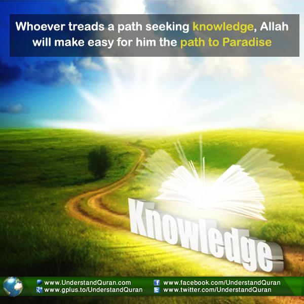 understand-quran-pursuit-of-knowledge-iou