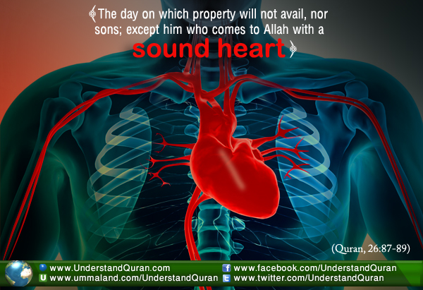 Why Is The Heart So Important In Islam Understand Al Qur An Academy