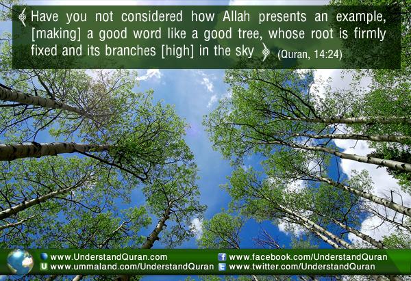 understand-quran-best-investment
