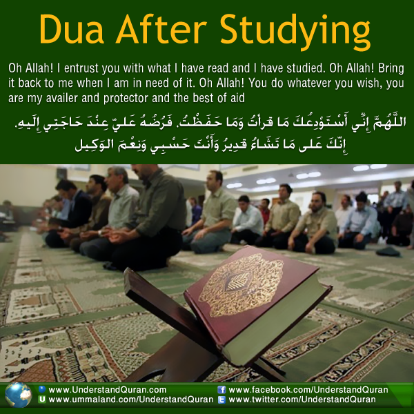 educationduaafterstudying