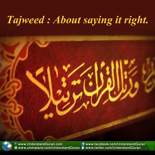 understand-quran-learn-tajweed-beautify-quran