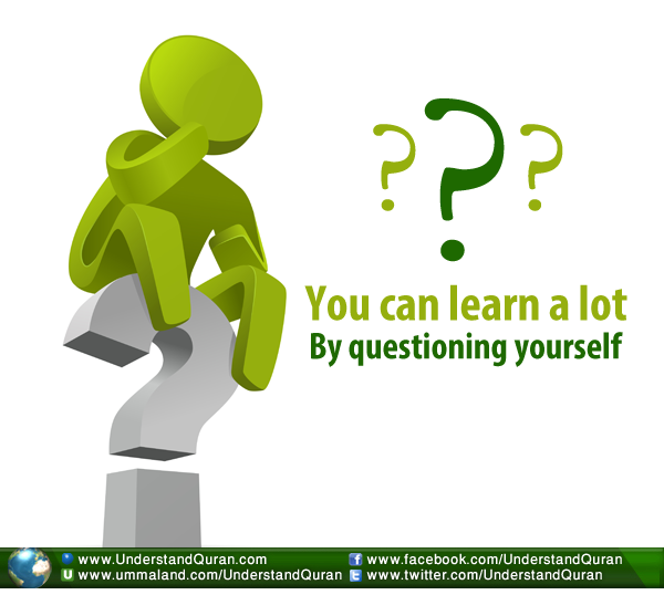 educationquestioningyourself