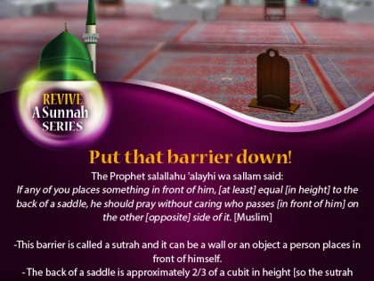 Revive a Sunnah: When to Build a Barrier