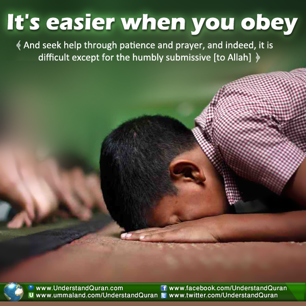 Why Does the Quran Ask Us to Prostrate in Prayer? - Understand Al ...